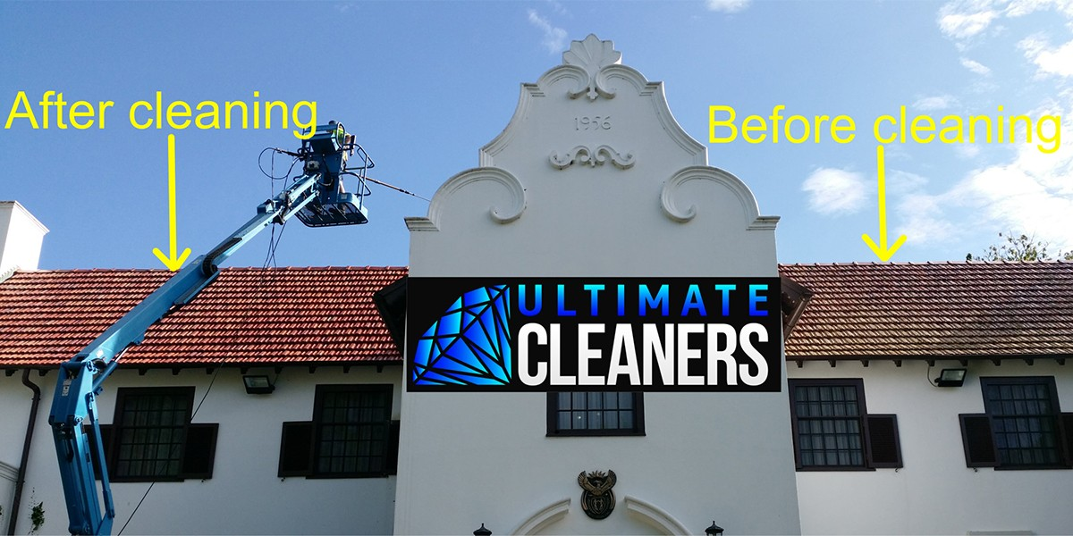 Roof Cleaning8