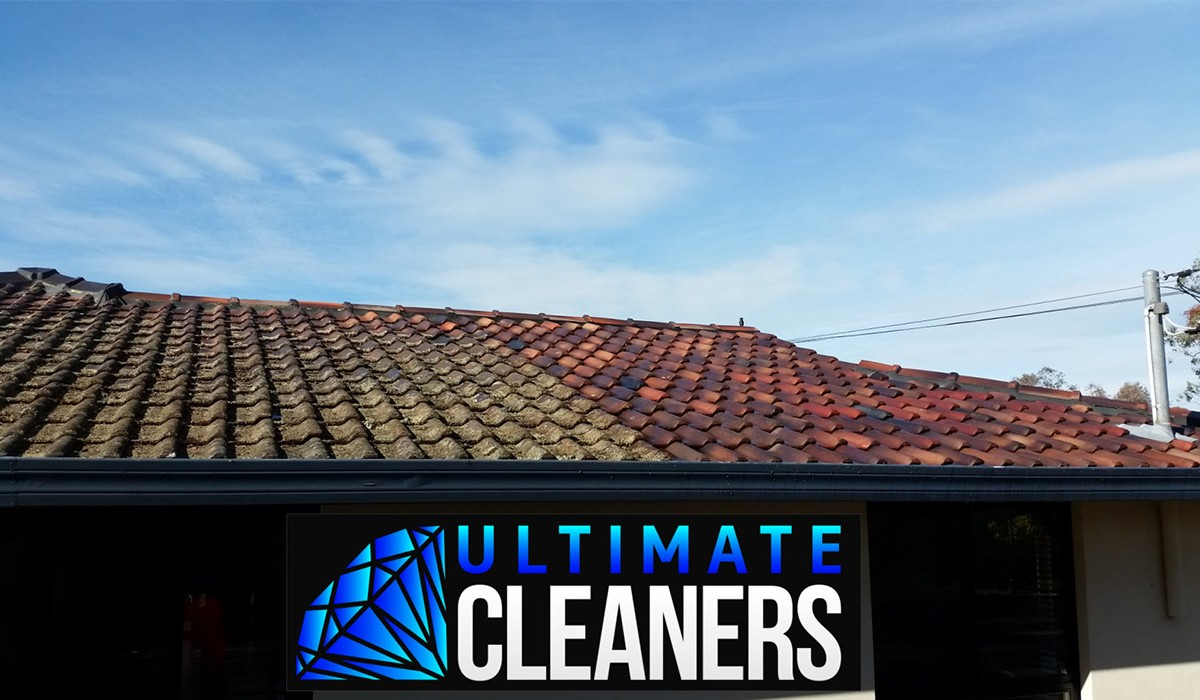 Roof Cleaning9