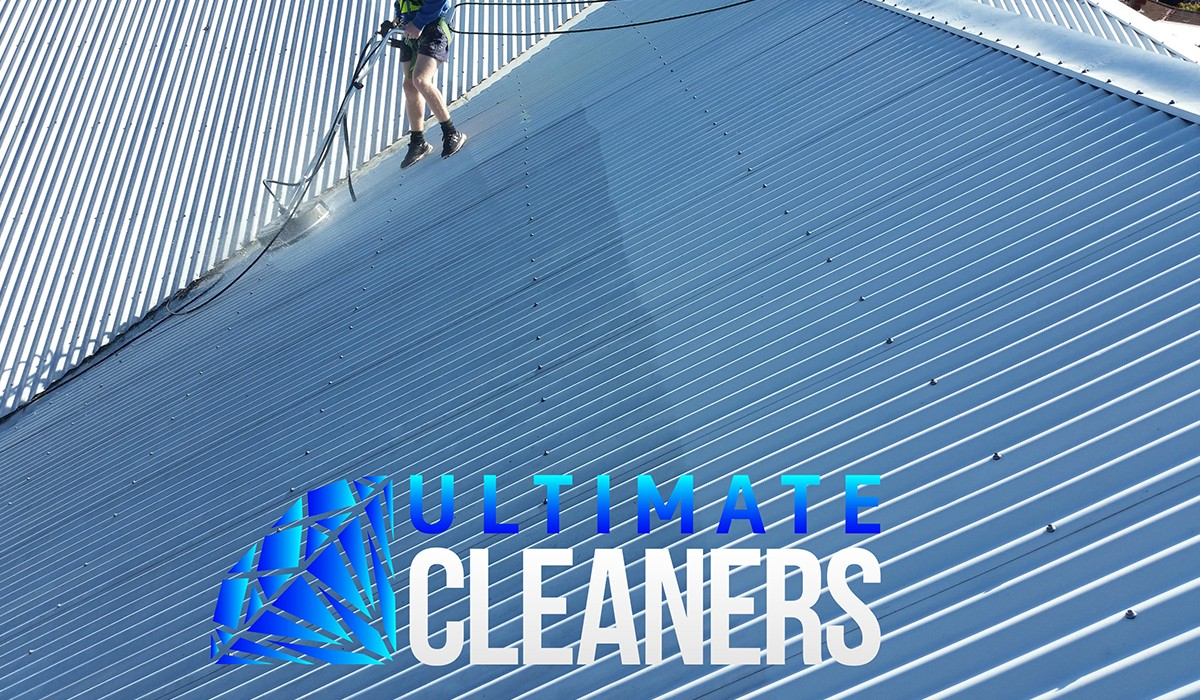 Roof Cleaning6