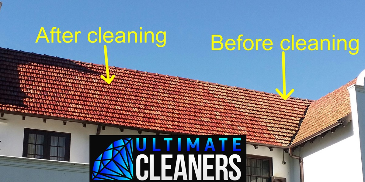 Roof Cleaning11