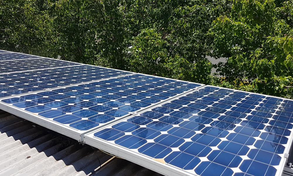 Solar Panel cleaning5
